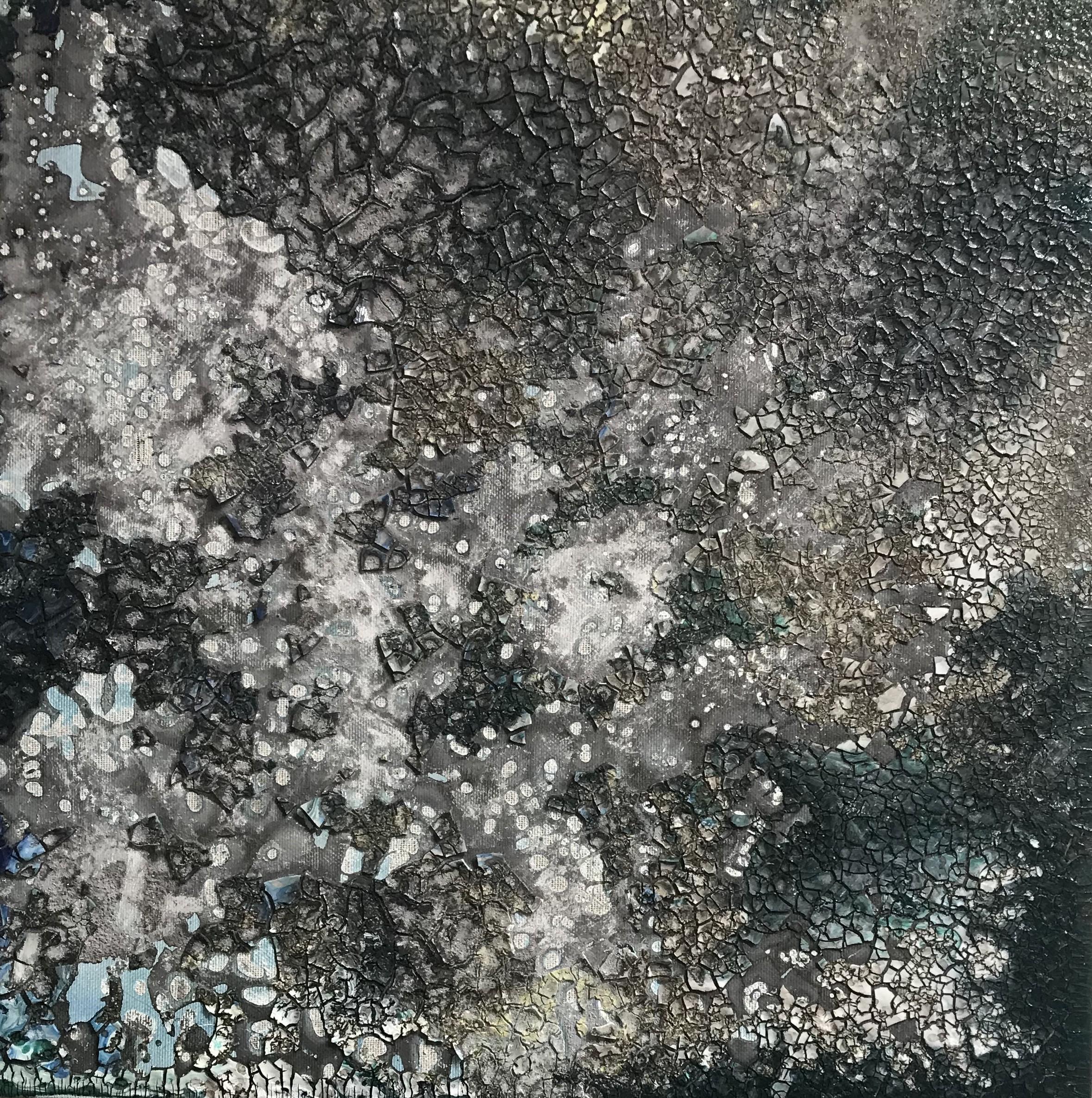 nevicata denis volpiana